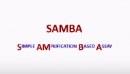 Simple Amplification Based Assay (SAMBA) Webinar (Sept. 2015)